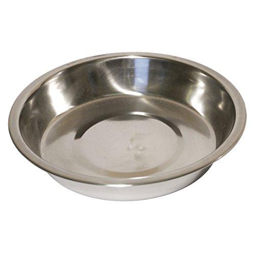 Rosewood Ciotola in acciaio inox Shallow cucciolo Pan, da 10 pollici - Cane Pan