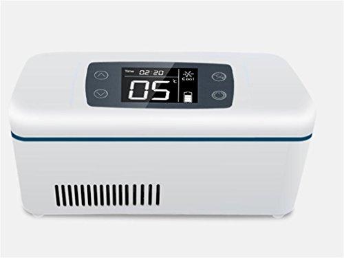 XW Thermostatische Auto Drogen Mini Isolierte Mini Kühlschrank , White,white