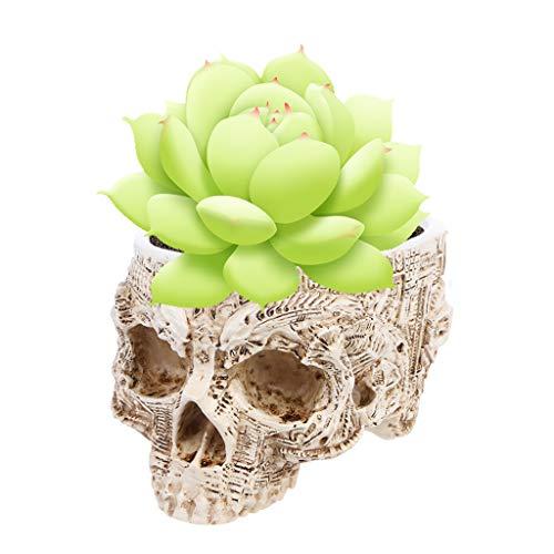 Kofun Hand Carved Skull Flower Pot Human Skull Bone Bowl Home Garden Decor Halloween Decoration (Halloween Decor Garden)