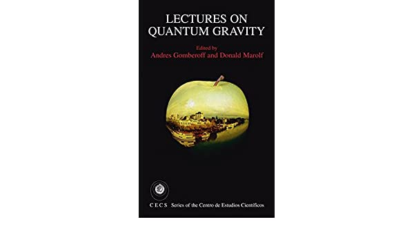 Lectures on Quantum Gravity (Series of the Centro De Estudios Científicos)