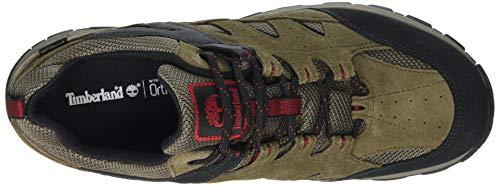 Timberland Men s Sadler Pass F L Low GTX Oxfords   Light Brown Suede P01   12 5  47 5 EU