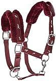 cwell Pferde New Equine Print Fell Gepolsterte Halfter Halfter + passende Leine Burgund Pony