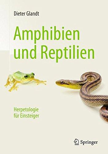 Amphibien und...