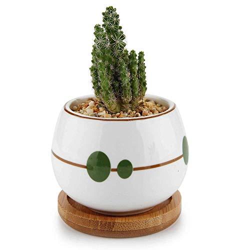 Qiuqiu Home 7cm Keramik Sukkulenten Blumentopf Kaktus Pflanzer Fenster Box mit Bambus Tablett - Mini Größe Desktop Fensterbank Büro Dekor Geburtstag Hochzeit Weihnachten für Gartenliebhaber - Mini-bambus-box