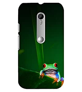 FIXED PRICE Printed Back Cover for Moto X Pay
