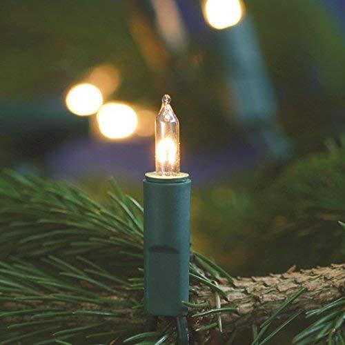 matches21 Mini Lichterkette/Klassische Minilichterkette extra warmweiß 100-flammig klar/grün 230V warmes Licht für Innen