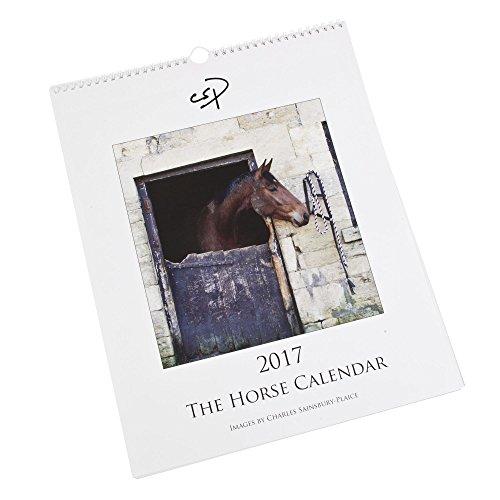 el-caballo-calendario-2017-calendario-de-pared-grande-con-fotografias-de-caballos-y-ponis-por-charle