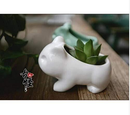 AGGIEYOU 2 unids Mini Pokemon Maceta De Cerámica Maceta Blanca Verde Plantas Suculentas Flor Planta Bonsai Olla Lindo, Blanco