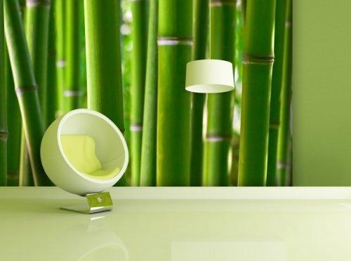 Fototapete Bamboo Forest - weitere Größen und Materialien wählbar - DEUTSCHE PROFI QUALITÄT von Trendwände