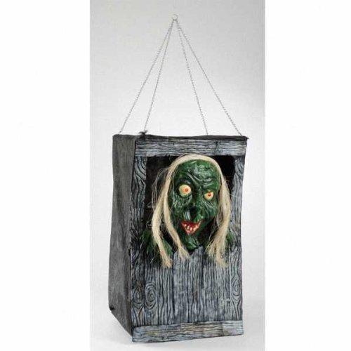 Halloween Amscan International Hexe In Der Kiste (Hexen In Der Halloween)