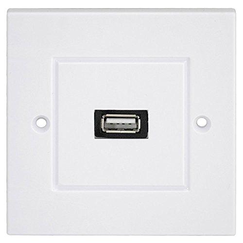 Dual-port-wall Plate (Wandplatte Wandsteckplatt Panel USB 2.0 Port Outlet wanddose Tafel Netzkabel und Mehrfachsteckleisten)
