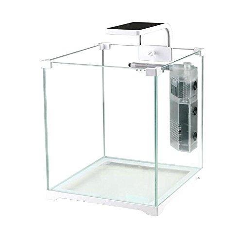 mini-serbatoio-di-piccoli-pesci-piccolo-ecologia-creativa-fish-tank-di-vetro-ultra-bianco-acquario-p