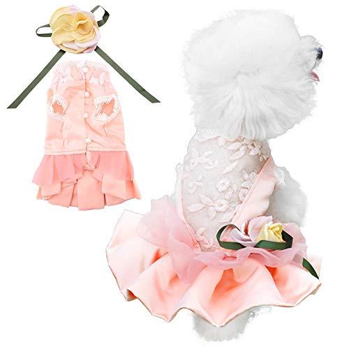 Pangding Haustier Kleid, Lace Flower Bowknot Festival Tutu Rock Kostüm Outfit Bekleidung für Hündchen(M) (Lace Mesh Kostüm)