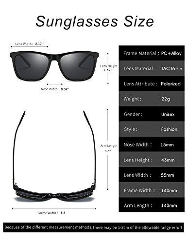 Rocf Rossini Mens Polarisierte Wayfarer Sonnenbrille Vintage Sonnenbrille für Frauen UV400 mit Fall (Transparent/Silber, 55)