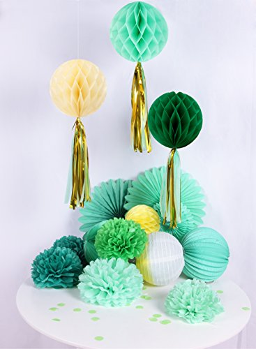 Mint & Grün Party Dekoration Kit Wabenbälle Tassels Gold Pompoms Türkis Konfetti (Und Gold Mint-grün)