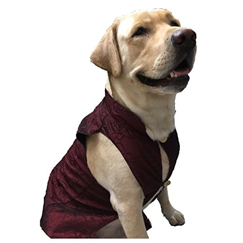 Wagging Fashion Red Nehru Jacket For Dogs (3)