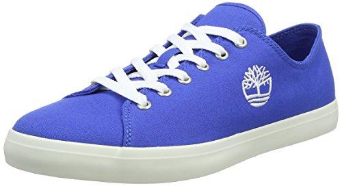 Timberland Adventure 2.0 Cupsole Fabric, Zapatos de Cordones Oxford para Hombre, Azul (Nebulas Blue Canvas J45), 42 EU