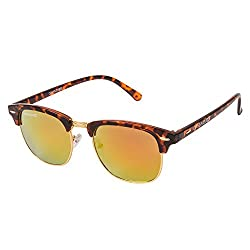 Danny Daze Wayfarer Sunglass (Brown) (D-1214-C8)