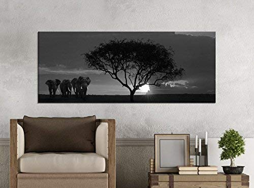 Cuadros en Lienzo 1 Pieza 100x40cm Negro Blanco África Sabana Elefantes Safari...
