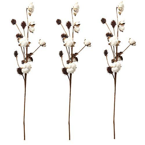Aisamco 3 pezzi di steli di cotone decorazione di fattoria scelte floreali stile rustico riempitore per vaso rami di cotone rustico 68cm per stelo decorazione fiore