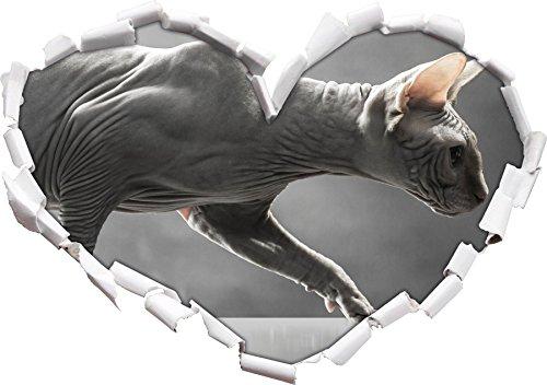 Unica forma di cuore Sphynx gatto nel formato sguardo, parete o adesivo porta 3D: 92x64.5cm, autoadesivi della parete, decalcomanie della parete, Wanddekoratio