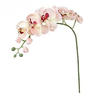 1 Pezzo Decorazione Della Casa Impianto Di Simulazione Artificiale Orchidea Farfalla Fiore - Rosa