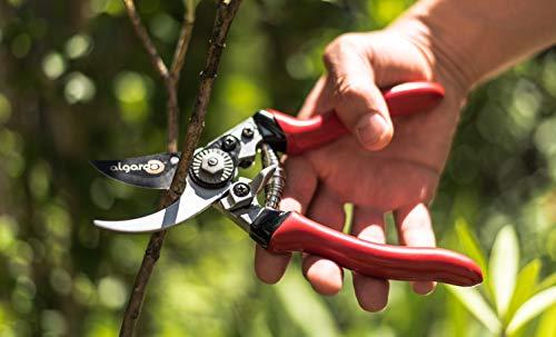 Rostfreie Gartenschere mit antihaftbeschichteten scharfen Stahl-Klingen - 3