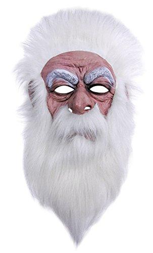 Bristol Novelty bm456Wizard Maske (One Size) (Kind Gnome Kostüm)