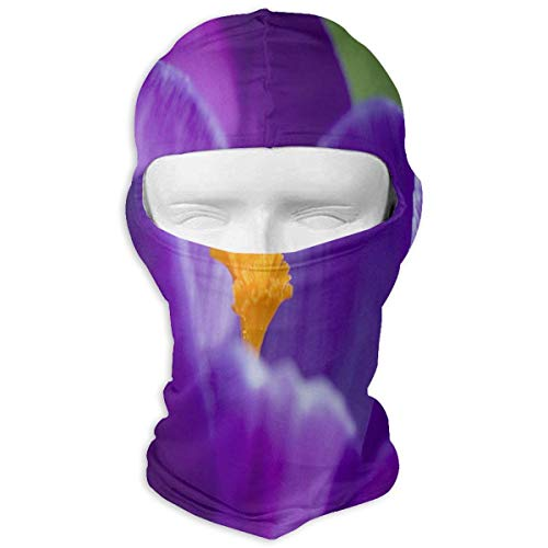 keiwiornb Balaclava Windproof Ski Mask-Balaclava Rainbow Saint Patrick's Day Full Face Masks Ski Headcover Motorcycle Hood for Cycling Sports Hiking