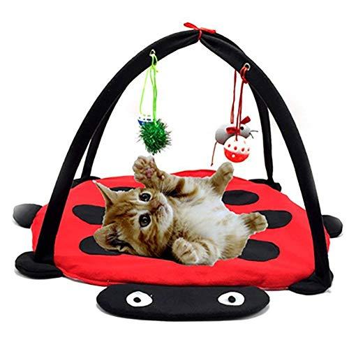 Ainstsk Haustierzelt aus Samt, doppelt, Multifunktional, weich, für Haustiere, Spielzeug, Spielmatte für Haus, Katzen, Möbel, Zelt und Katzen, Interaktive Aktivität mit hängenden Maus-Glockenbällen