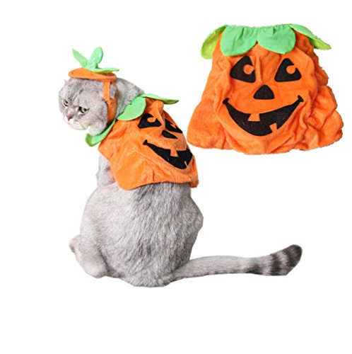Fully Haustier Halloween Kostüm Hund Katze Kürbis Hut Talar Hülle Kleidung Party (Set (Hut,Hülle))