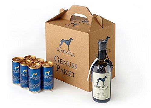 Windspiel Premium Dry Gin & Tonic Water-Paket