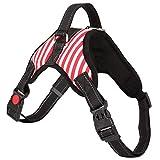 CGDZ S-XL einstellbar Haustier reflektierende Klebeband für kleine mittelgroße Hunde pet atmungsaktiv zu Fuß Handschlaufe Hund liefert S 10