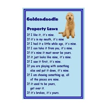 GOLDENDOODLE Property Laws Magnet Personalized