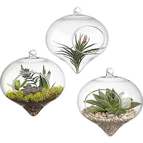 Blumentopf, Blumenvase zum Aufhängen, Glas, Pflanzgefäß, Terrarienbehälter, Heimdekoration -