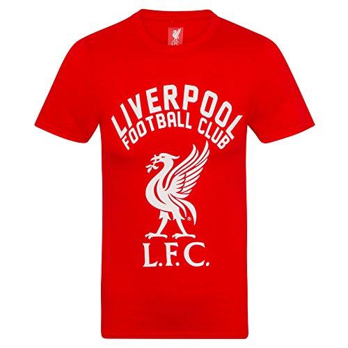 Liverpool FC Herren T-Shirt mit Printmotiv - Offizielles Merchandise - Geschenk für Fußballfans - Rot - XL