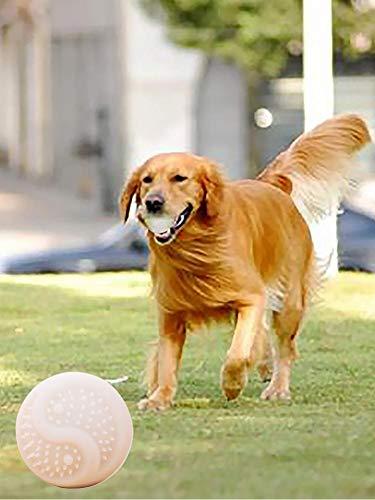 soundwinds Hund Glow Ball, LED-Rolling-Flash-Ball, Pet Magic Roller Ball mit LED-Glitter USB Interaktive Pet Jumping Ball Spaß Spielzeug für Haustier Hündchen Katze Bissfest ungiftig