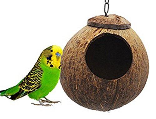 Spaufu Nid d'Oiseau Suspendu en Coque de Noix de Coco Naturel Dormir pour Perroquet Ara Petits Oiseaux Décoration de Maison Jardin