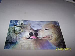 Wolfs 3D Picture, A 3D Lenticular Wolf Wall Art Ready To Frame, Sized 30 x 20 cms (11.75 x 8 inches) approx