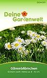 Gänseblümchen Blumensamen - Bellis perennis - Samen für ca. 500 Pflanzen - als Bodendecker für die Wiese - Wiesenblumen