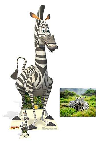 BundleZ-4-FanZ Marty das Zebra von Madagascar Cardboard Cutout Lebensgrosse und klein Pappfiguren/Stehplatzinhaber/Aufsteller Fan Pack, 154cm x 62cm Enthält 8X10 (25X20Cm) starfoto