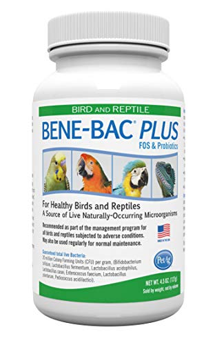 Bene Bac Plus Bird