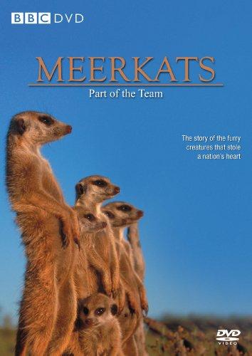 Image of Meerkats [DVD]