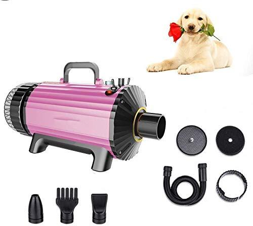 Perro Secador pelo bajo nivel ruido alta potencia