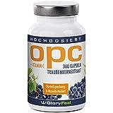 OPC Extracto de Semilla de Uva - 360 cápsulas de OPC puro y concentrado más Vitamina C – provisión de 6 meses – Calidad Premium de fabricación alemana