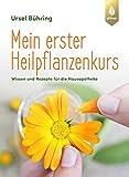 Mein erster Heilpflanzenkurs: Wissen und Rezepte für die Hausapotheke