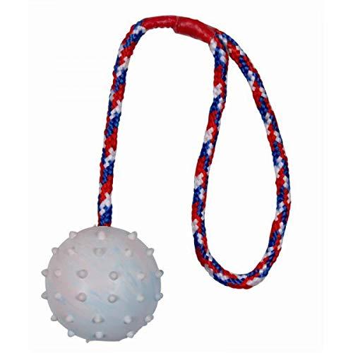 Trixie 3305 Ball am Seil, Naturgummi, ø 6/30 cm