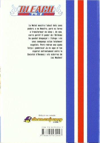 Bleach 34 (Manga en català)