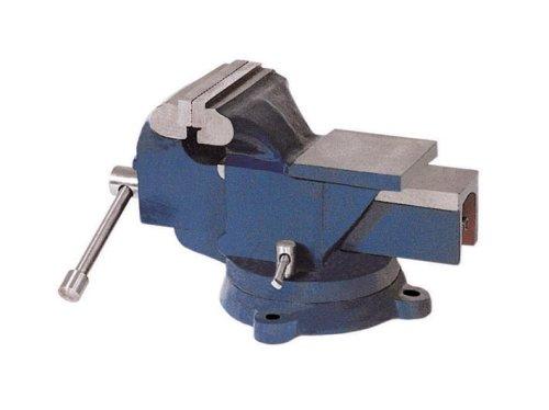 100 mm Schraubstock mit Amboss 5,5 kg 360 Grad drehbar