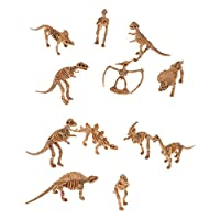 Model Dinosaur Skeleton Kit Assorted Set of 12pcs